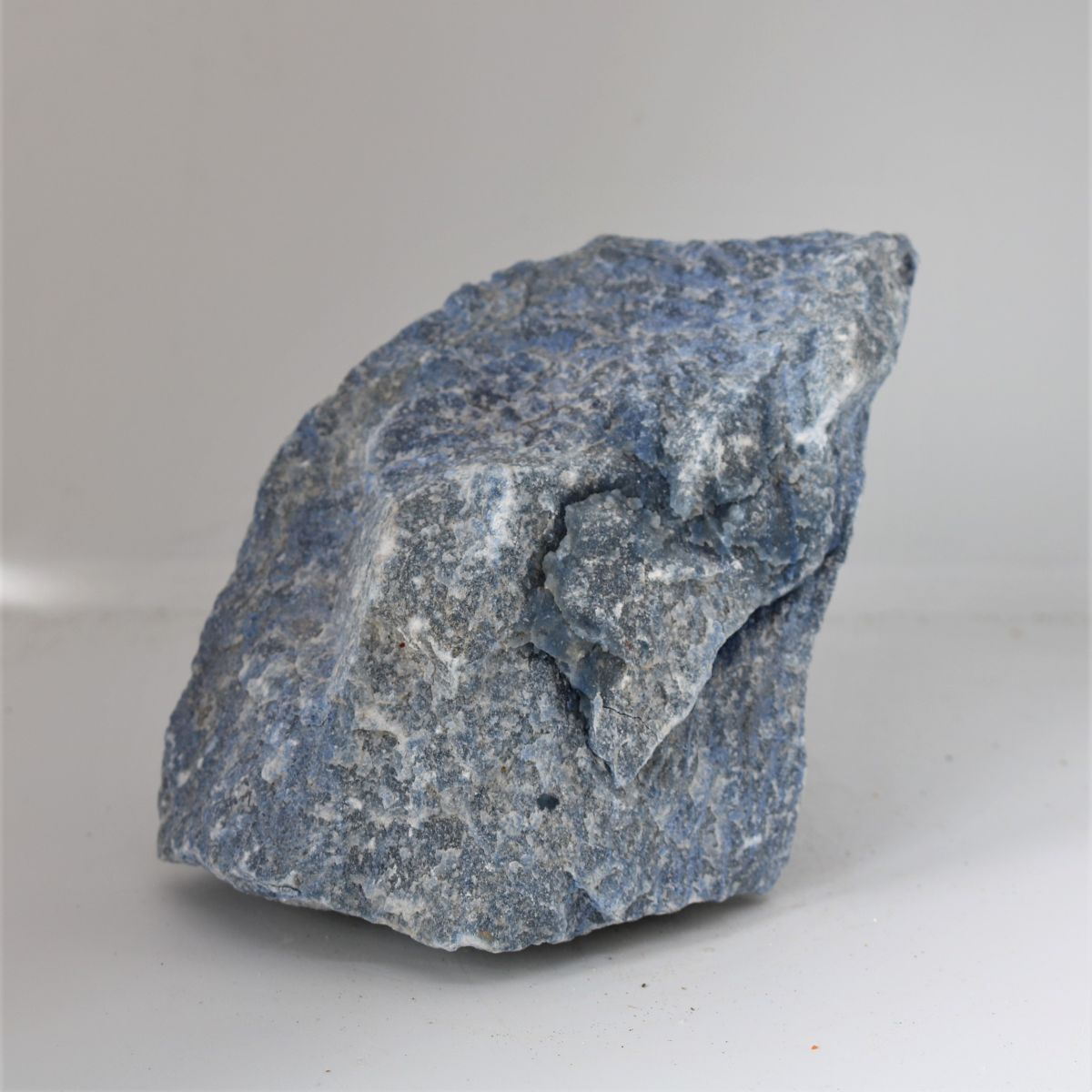 ms0241 2