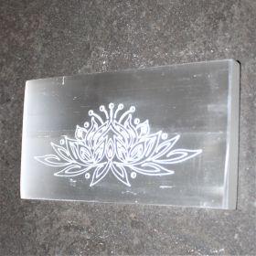Lotus schijf van Seleniet / Satijnspaat