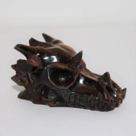 Draken schedel van Tijgeroog