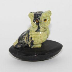 Serpetijn uil op Basalt steen