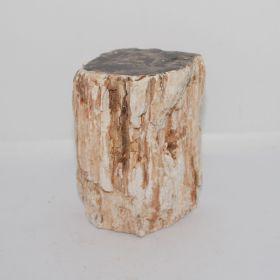 Versteend houten zuiltje